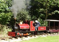 Bressingham Gardens & Steam Museum