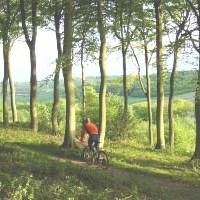 Aylesbury & Buckinghamshire Tour