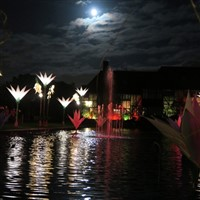 Glow at Wisley 2019