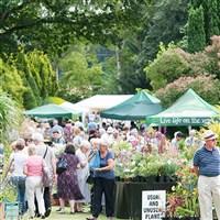 Great Comp Garden Show
