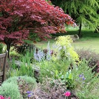 Colchester/Green Island Gardens